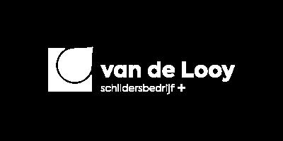 Van de Looy